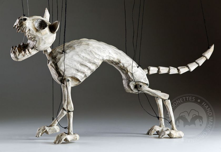 foto: Norbert The Skeleton Cat
