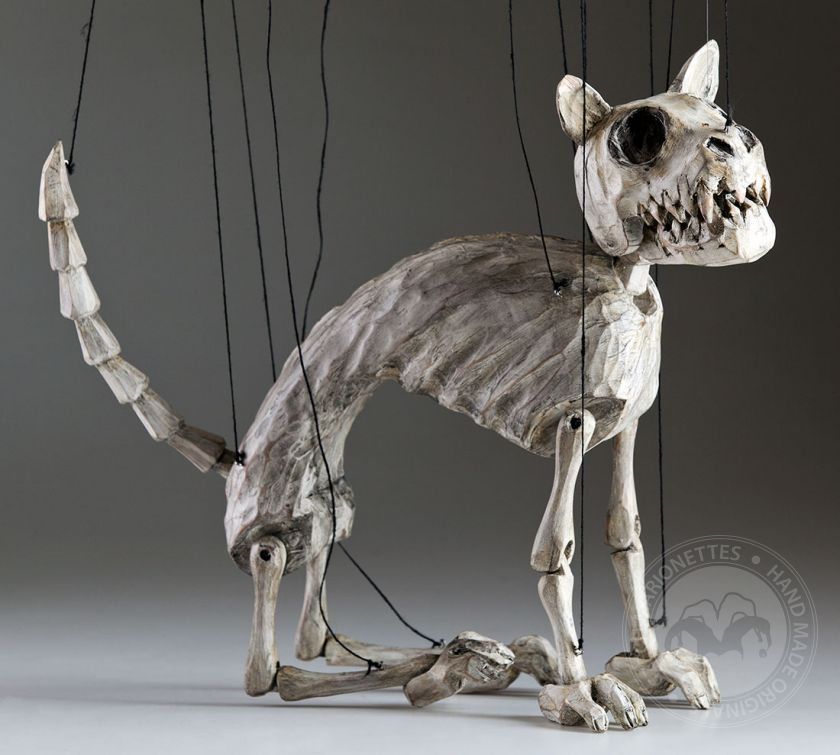 Norbert The Skeleton Cat