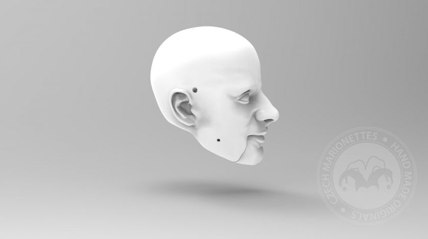 3D Model of a man with a high forehead head for 3D print
