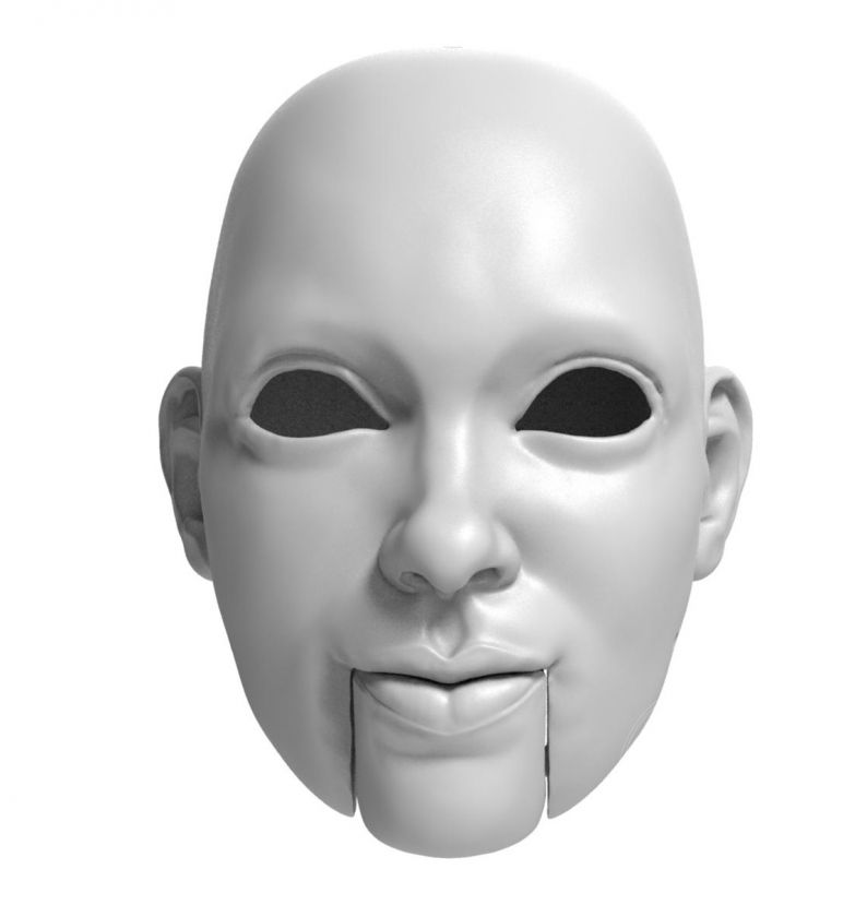 3D Model of clever lady head for 3D print